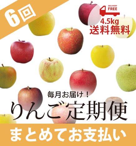 青森りんご定期便 4.5kg(毎月6回/まとめてお支払い)