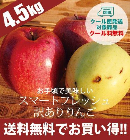 【訳あり】スマートフレッシュ青森りんご 4.5kg