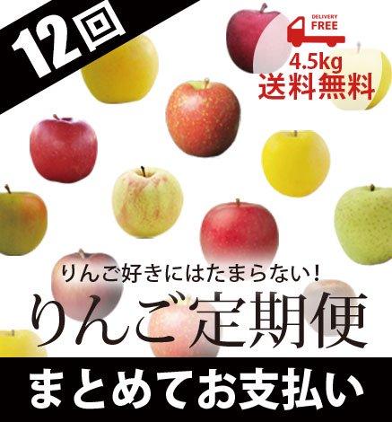 青森りんご定期便 4.5kg(12回コース/まとめてお支払い)