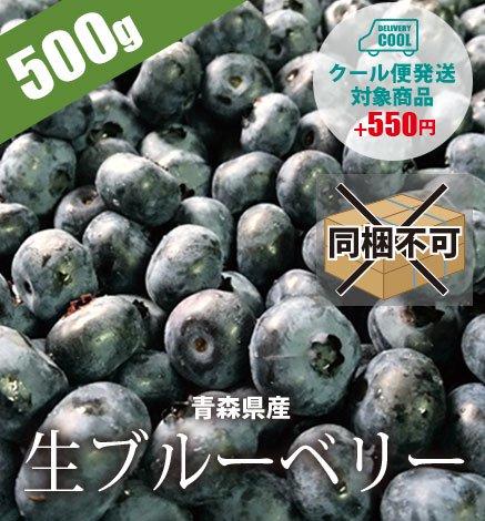 青森県産 生ブルーベリー500g 【2つ以上ご購入で送料無料】