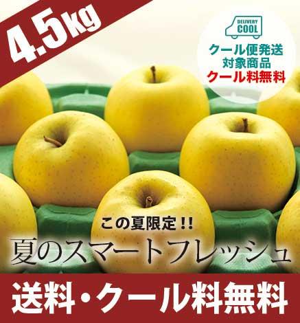 【限定】夏のスマートフレッシュ 4.5kg 通常品・傷あり