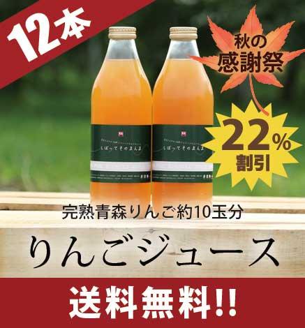 りんごジュース「しぼって そのまんま」12本入り 【秋の感謝祭 特別価格】