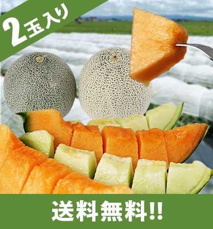 つがるメロン タカミ・レノンの食べ比べセット【送料込】
