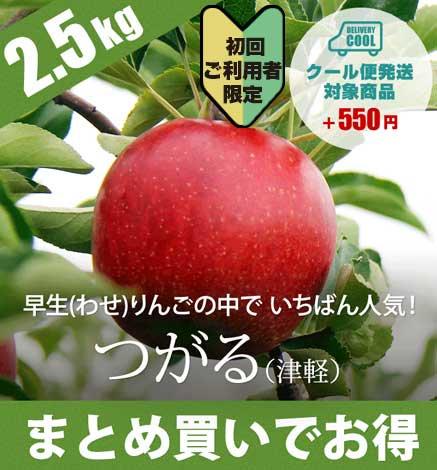 【初回ご購入者限定価格商品】【9月中旬〜】青森りんご つがる 2.5kg(6〜10個)