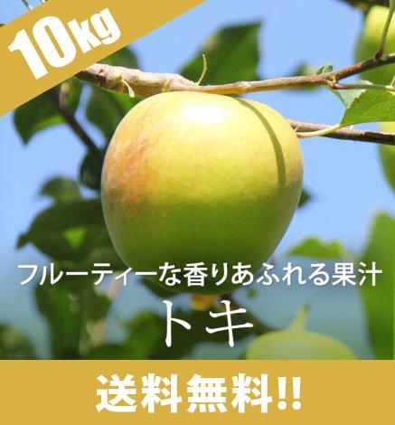 【10月上旬〜】青森りんご トキ 9kg(26〜40個)