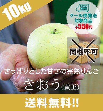 【9月上旬〜中旬出荷】青森りんご きおう(黄王) 9kg(26〜40個)