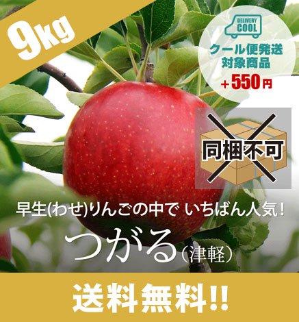 【9月中旬〜】青森りんご つがる(津軽) 9kg(26〜40個)