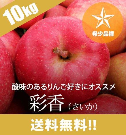 【9月下旬〜:希少品種】青森りんご 彩香(さいか)9kg(26〜40個)