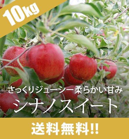 【予約:10月下旬〜】青森りんご シナノスイート 9kg(26〜40個)