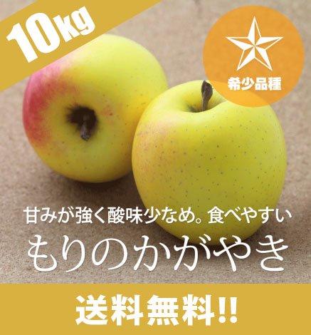 【10月下旬〜】【希少品種】青森りんご もりのかがやき 9kg(26〜40個)
