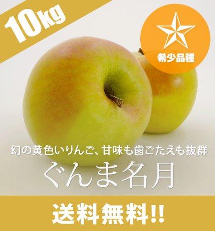 青森りんご ぐんま名月 9kg(26〜40個)
