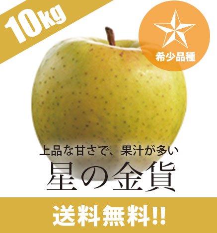 【希少品種】青森りんご 星の金貨 9kg(26〜40個)
