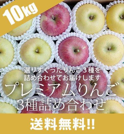 贈答用3種セット プレミアムりんご 9kg