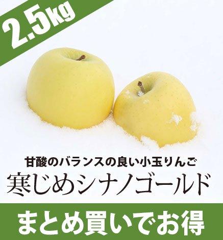 青森りんご 寒じめシナノゴールド  2.5kg(9〜14玉)