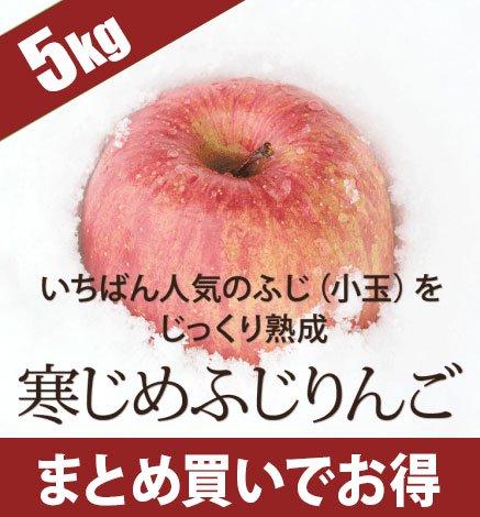 青森りんご 寒じめふじりんご 4.5kg(18〜28玉)