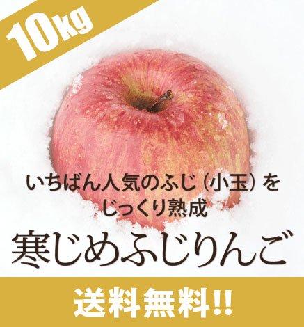 青森りんご 寒じめふじりんご 9kg(36〜56玉)