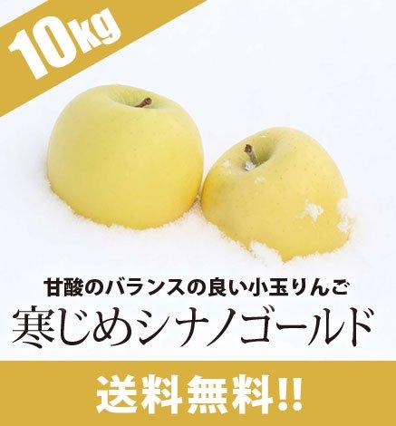 青森りんご 寒じめシナノゴールド  9kg(36〜56玉)