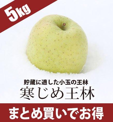 青森りんご 寒じめ王林 4.5kg(18〜28玉)