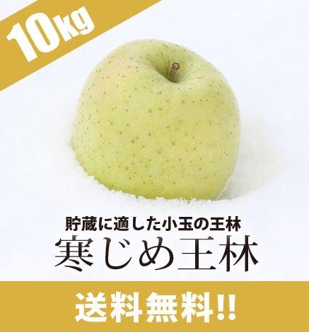 青森りんご 寒じめ王林 9kg(36〜56玉)