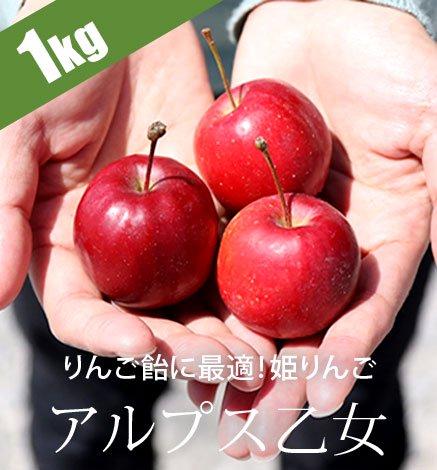 青森りんご アルプス乙女 1kg(20〜30個)