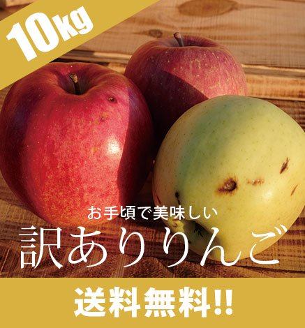 【10月上旬〜】訳あり青森りんご 9kg