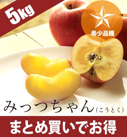 青森りんご みっつちゃん(こうとく) 4.5kg(16〜24個)