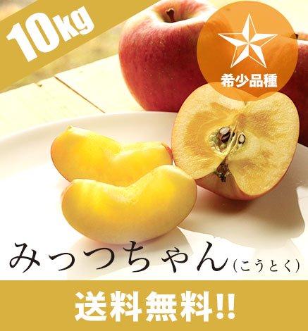 青森りんご みっつちゃん(こうとく) 9kg(32〜48個)