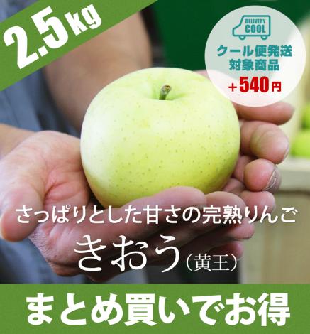 【9月上旬〜出荷】青森りんご きおう(黄王) 2.5kg(6〜10個)