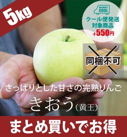 【9月上旬〜中旬出荷】青森りんご きおう(黄王) 4.5kg(13〜20個)