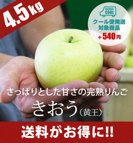 【9月上旬出荷】青森りんご きおう(黄王) 4.5kg(13〜20個)