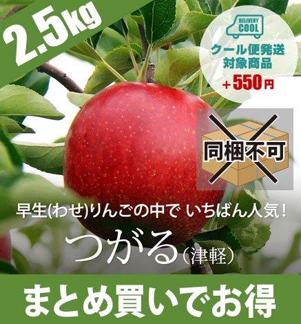 【9月中旬〜】青森りんご つがる(津軽) 2.5kg(6〜10個)