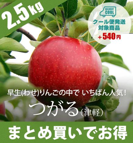 【9月中旬出荷】青森りんご つがる(津軽) 2.5kg(6〜10個)
