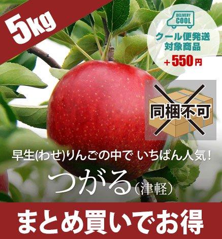 【9月中旬〜】青森りんご つがる(津軽) 4.5kg(14〜20個)