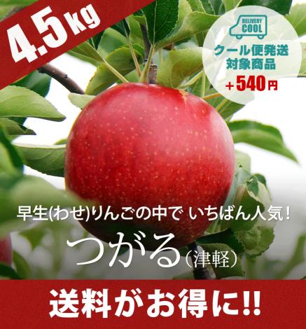 【9月中旬出荷】青森りんご つがる(津軽) 4.5kg(14〜20個)