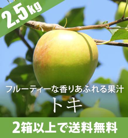 【10月上旬】青森りんご トキ 2.5kg(7〜12個)