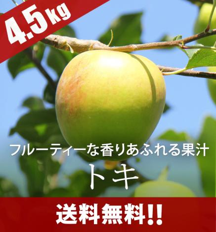 【10月上旬】青森りんご トキ 4.5kg(14〜22個)