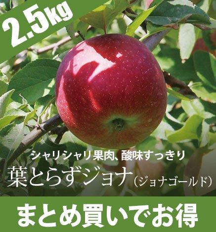 【10月下旬〜】りんご 葉とらずジョナ(ジョナゴールド) 2.5kg(6〜10個)