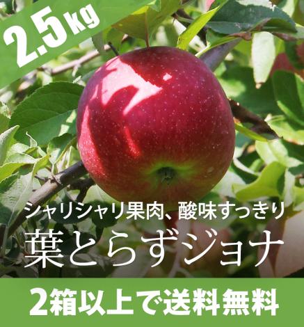 【販売中】青森りんご 葉とらずジョナゴールド 2.5kg(6〜10個)