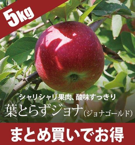 【予約:10月下旬〜】青森りんご 葉とらずジョナ(ジョナゴールド) 4.5kg(14〜20個)