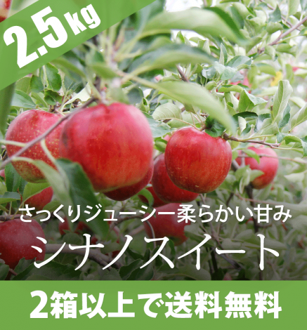 青森りんご シナノスイート 2.5kg(6〜10個)