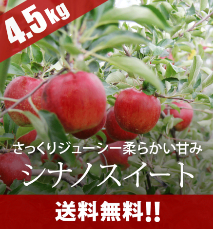 【予約】青森りんご シナノスイート 4.5kg(14〜20個)