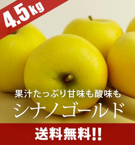 青森りんご シナノゴールド 4.5kg(14〜20個)