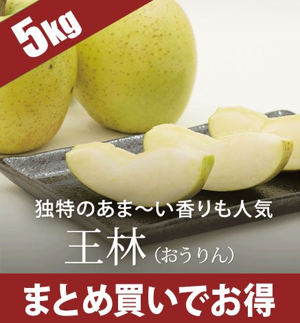 青森りんご 王林(おうりん) 4.5kg(14〜20個)