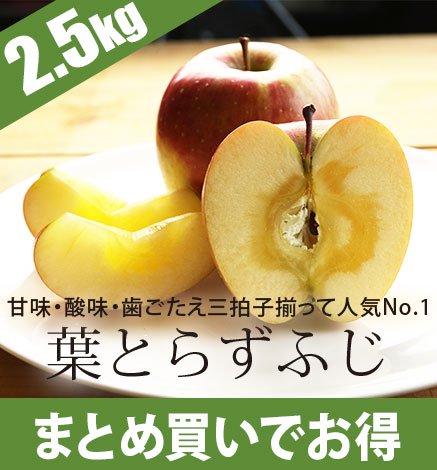 青森りんご 葉とらずふじ 2.5kg(6〜10個)