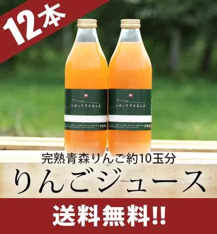 青森りんご100% 濃厚林檎ジュース「しぼって そのまんま」  1箱(1本1L×12本入り)