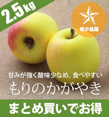 【希少品種】青森りんご もりのかがやき 2.5kg(6〜10個)