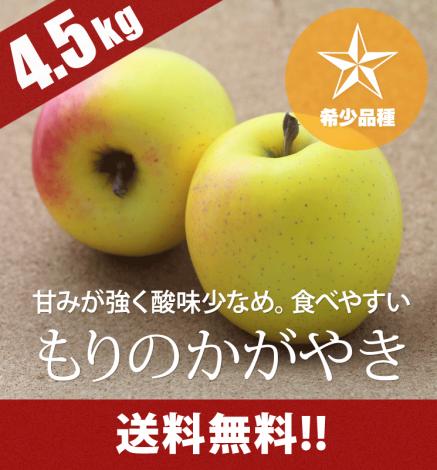 【予約】【希少品種】青森りんご もりのかがやき 4.5kg(14〜20個)