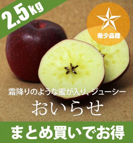 【希少品種】青森りんご おいらせ 2.5kg(6〜10個)
