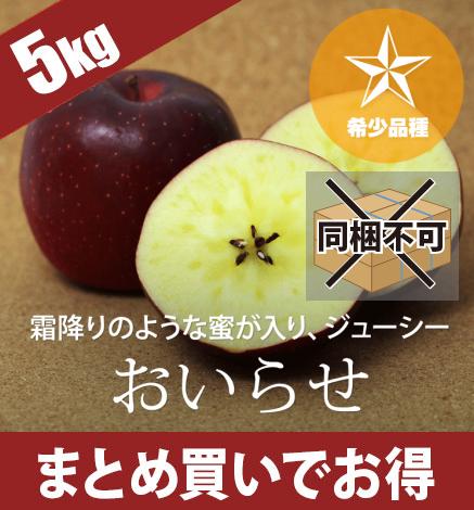 【予約】【希少品種】青森りんご おいらせ 4.5kg(14〜20個)