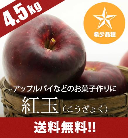 【10月中旬〜:希少品種】青森りんご 紅玉 4.5kg(14〜24個)